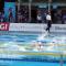 Nuoto - Azzurri a Parma